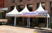 10ft Gazebo Tent 3